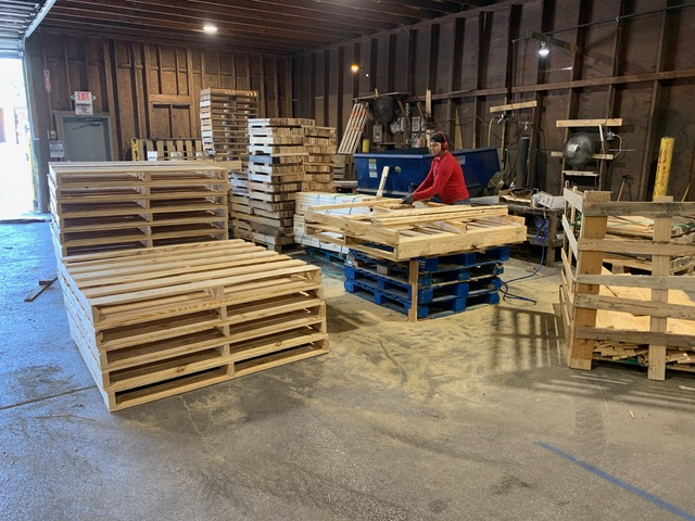 Why Gorgo should be your #1 choice for pallet recycling
